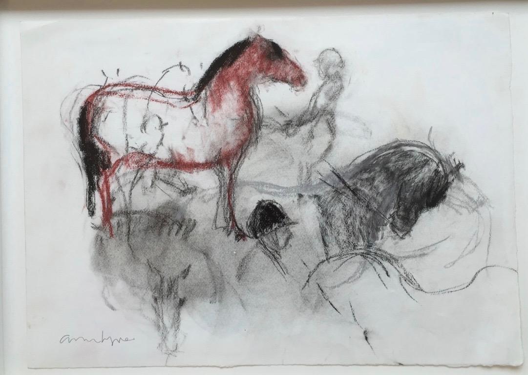 Ann Lyne Equestrians